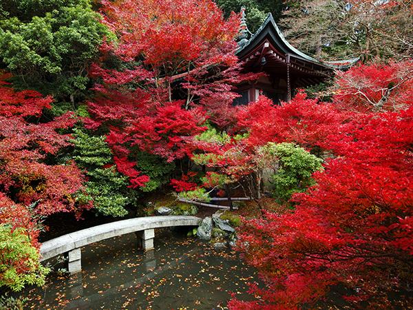 افضل خمس مدن  للسياحه في فصل الخريف